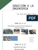 5- Introducciòn - Ramas de La IC