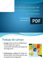 trabajo de campo Power   Teorías del Ap del Adolescente, el.pptx