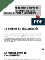 Biolixiviación de Cobre a Partir de Minerales Sulfurados