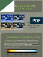 Balance de Blancos.pdf