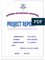 Project Report Job Satisfaction