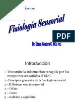 Fisiología Sensorial 6