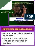 01fisiopatologia Del Acv