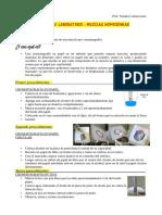 Practico Cromatografía Tercer Año