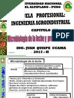 11 MICRO Microbiologia Leche y Produc Lacteos 2013