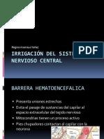 Irrigación Del Sistema Nervioso Central