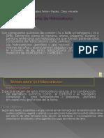 Topicos de Petroleo Definiciones y Plays (Ricardo Mtz.)