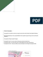 conjungtivitis bakterialis.pptx