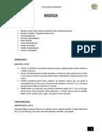 TAXONOMIA DE LA MASHUA.docx