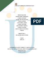 Fase 4_Solucionar un Problema Epistemologico_ Grupo_100101_36.docx