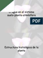 POTENCIAL HIDRICO.ppt