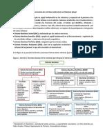 Sistema Nervioso Autonomo 2015