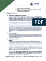 271183072-TDR-Puntos-Criticos-Carretera-SM-102-Cunumbuqui-San-Jose-de-Sisa-docx.docx