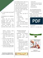 Leaflet PJK.pdf