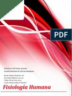 239136770-Practica-6-Hormonas-Sexuales.docx