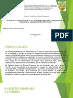 exposicion de la practica pre II.pptx
