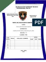 PERFIL DEL DELINCUENTE CIBERNETICO.docx