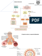 2.Respiratorio.pdf