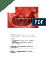 membranas_fetais