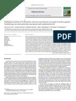 Antifungal Activity of Coriandrum Sativu