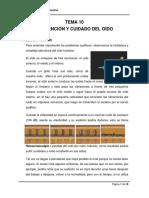 10_0 Proteccion Del Oido.doc