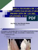 Tema 6.Glandula Mamaria Anatyfisio
