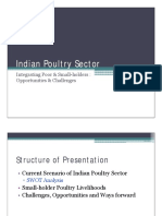 Indian Poultry Sector
