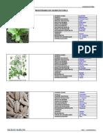 muestrario-olecultura.docx