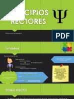 PRINCIPIOS-RECTORES