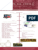 vinos chilenos (1)