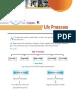 life processes-2