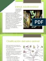 Reino animal, biodiversidad