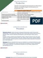 2_Alteraciones_Hidrotermales_Productos.pdf