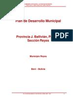 270683265 PDM Municipio de Reyes Beni