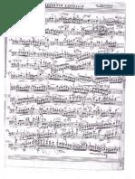 ---Bottesini - allegretto capriccio (ed. Ludwig Streicher - Manuscript).pdf