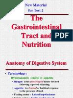 Anatomia Del Sistema Digestivo