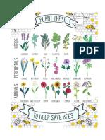 plantar.pdf