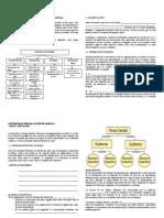 Tema 5 Separatas de Etapas de Redaccion Textual