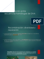 2017 Recombinación de DNA