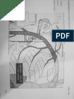 diagramad extremidades sup- sistema art 09-may