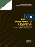 _Imagem_pensamento_e_cultura_corrigido.pdf