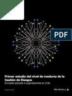cl-Estudio-gestión- riesgos Deloitte.pdf