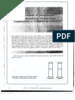 LIBRO-Introducción a Piaget Labinowicz