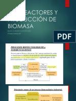 Biorreactores y Producción de Biomasa