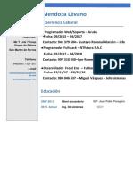 curriculum-erick.pdf