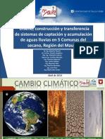 Roberto Pizarro.pdf