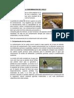 consecuencias y soluciones elsa.docx
