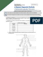 Taller repaso 3 (1).pdf