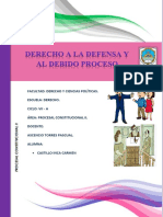 Derecho de Defensa y Debido Proceso
