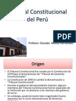 TRIBUNAL CONSTITUCIOANAL